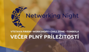 Mini Erasmus: Networking Night 2018